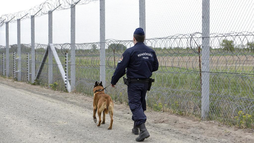 Sondersteuer für Einwanderung post's picture
