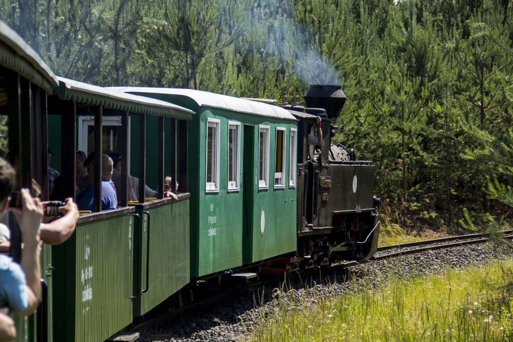 Eine der letzten Waldbahnen Europas