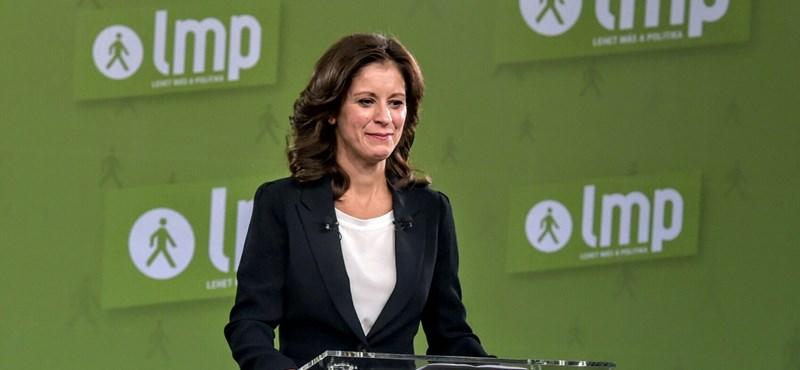 Ko-Vorsitzende der LMP tritt zurück post's picture
