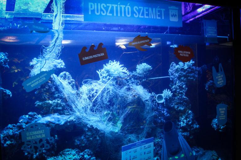 Aquarium als Mülleimer im Zoo von Pécs post's picture