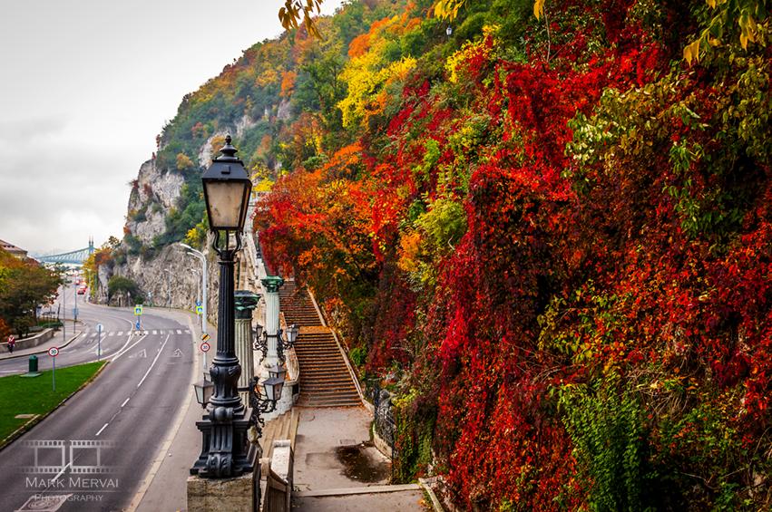 Ein Spaziergang am Ufer der Donau post's picture