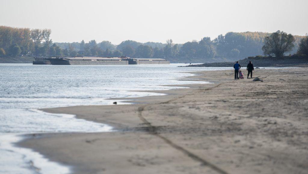 Landwirte können aufgrund des niedrigen Wasserstandes der Donau kein Getreide transportieren post's picture