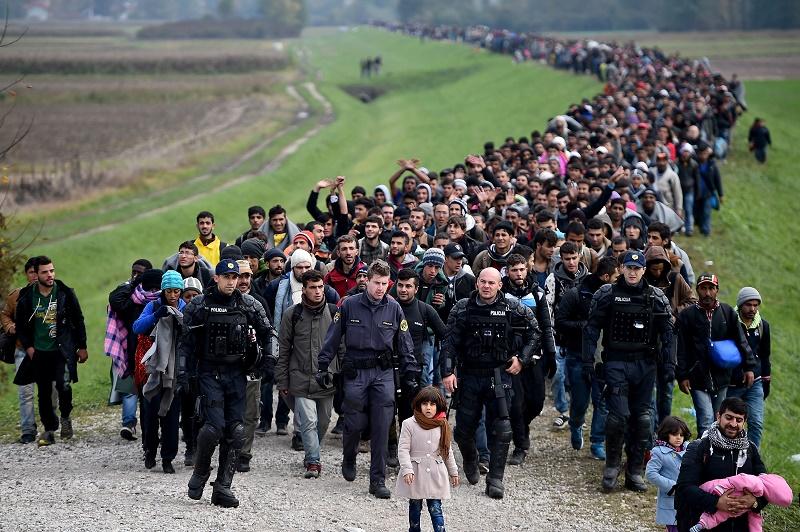 """Fidesz: Europa """"muss seine Grenzen schützen"""" post's picture"""