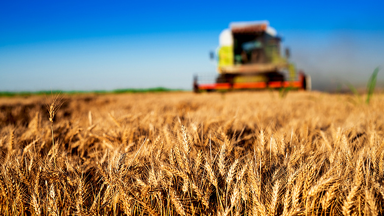 Protest gegen Kürzung der Agrarbeihilfen – zugunsten der Migration post's picture