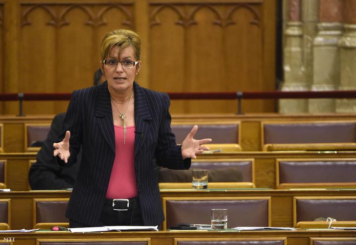 """MSZP-Abgeordnete bezeichnet Fidesz-Anhänger als """"Ratten"""" post's picture"""