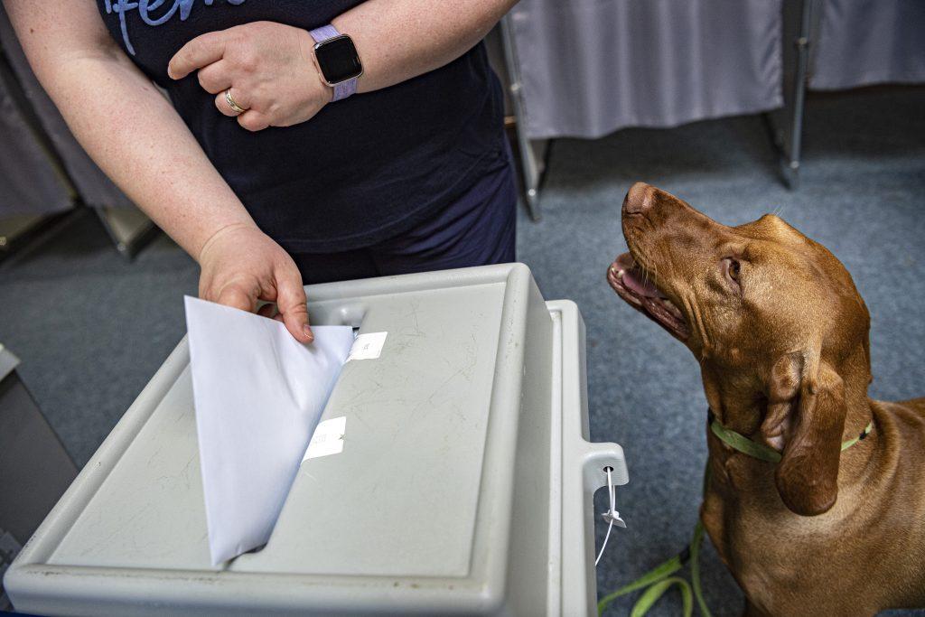 Mit einer Rekordwahlbeteiligung von über 41% endeten die EP-Wahlen in Ungarn