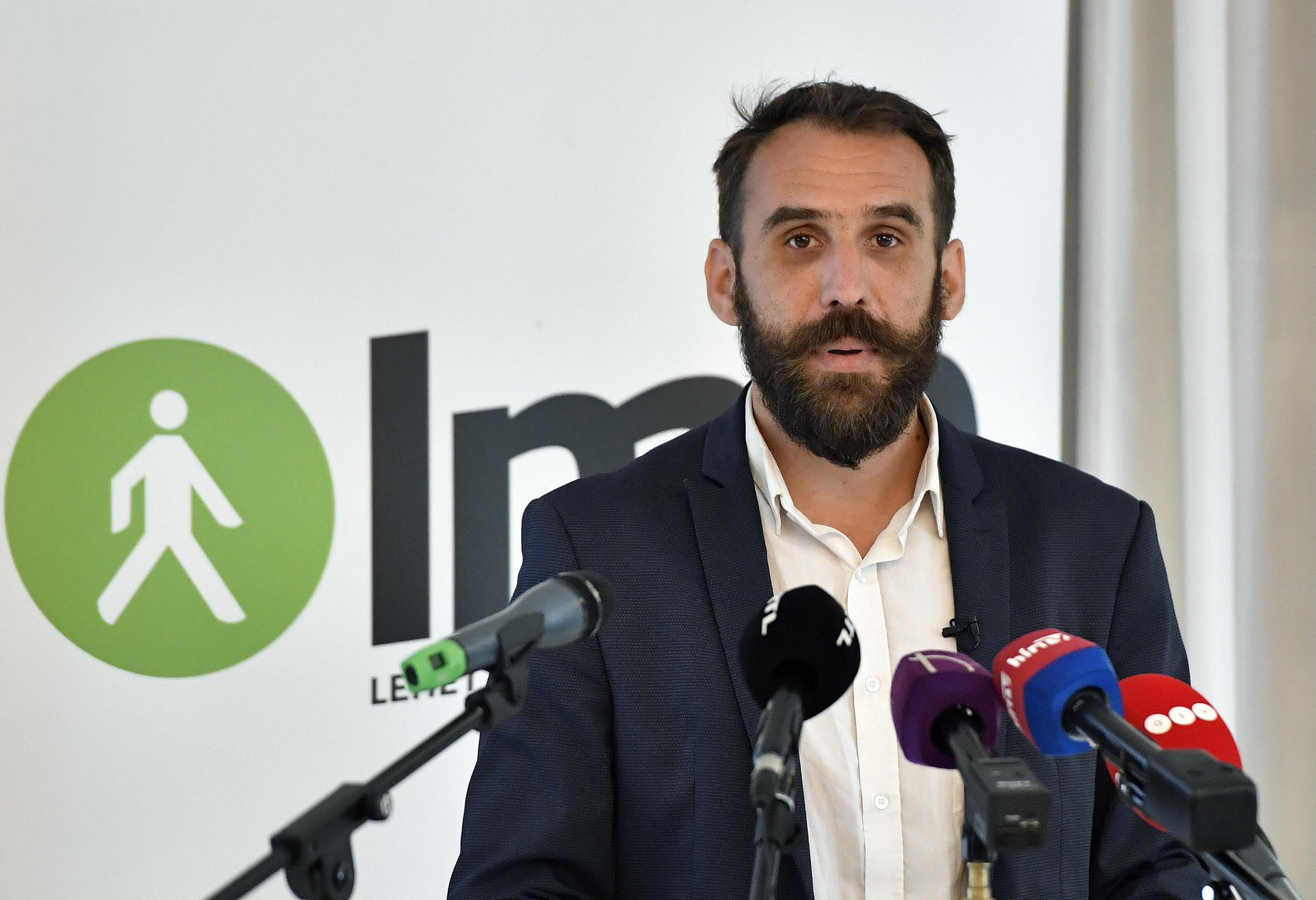 """LMP – Wahlprogramm: """"Europa wird entweder grün oder es wird nicht sein"""" post's picture"""