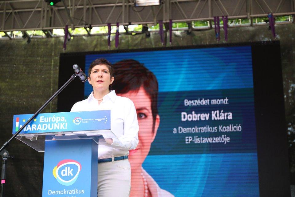 Linke Fraktion im Europäischen Parlament nominiert Dobrev zum Vizepräsidenten