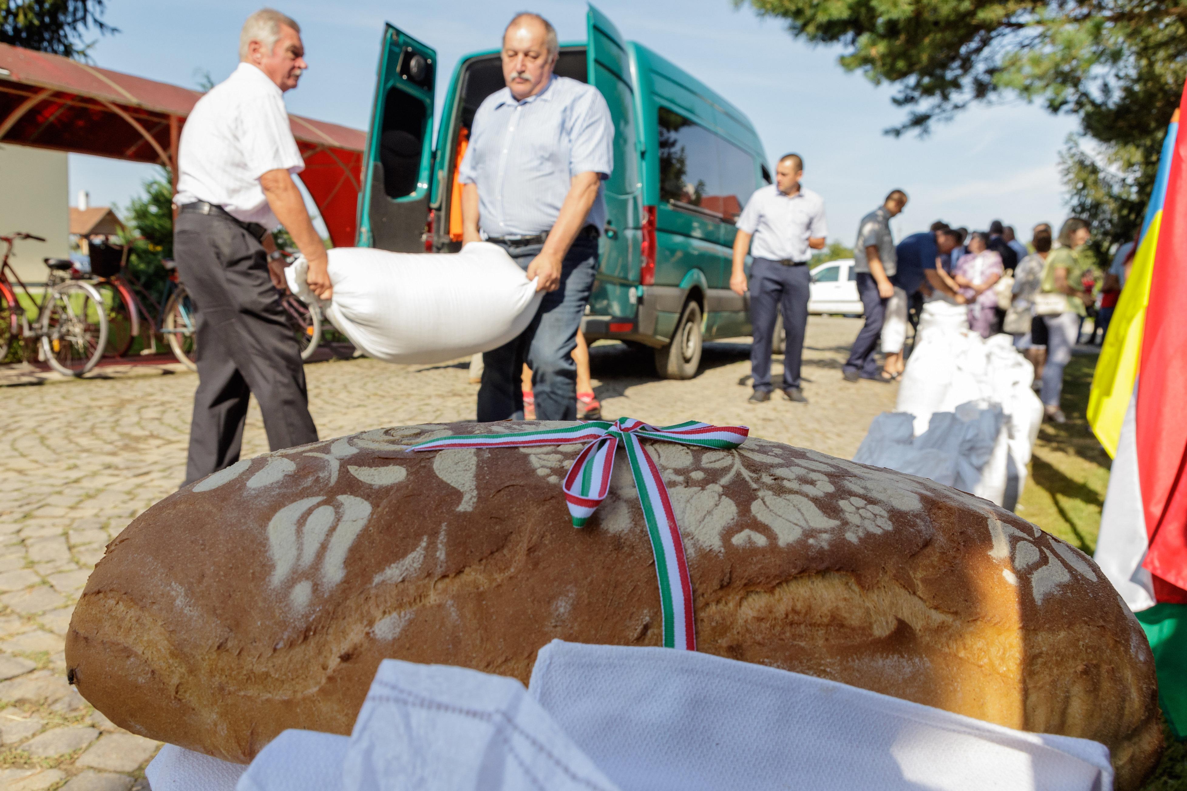 Brot der Ungarn: 400 Tonnen Weizen aus dem Karpatenbecken post's picture