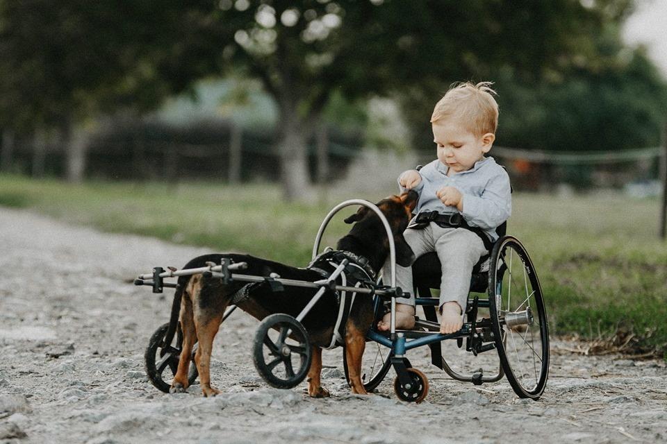 Spendenaktion für ein krankes Kind bewegt ganz Ungarn