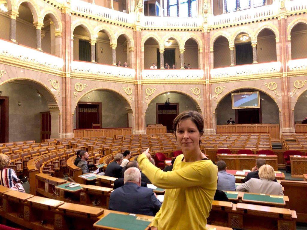 Sondersitzung über Klimaschutz – ohne Regierungsparteien post's picture