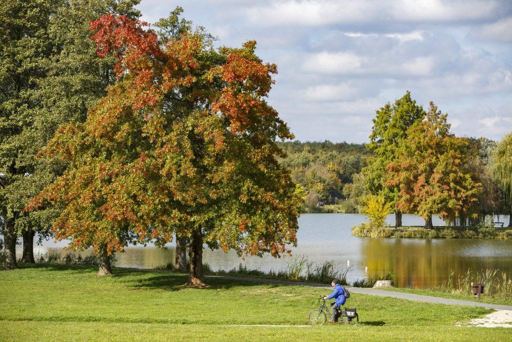 Goldener Oktober in Ungarn post's picture
