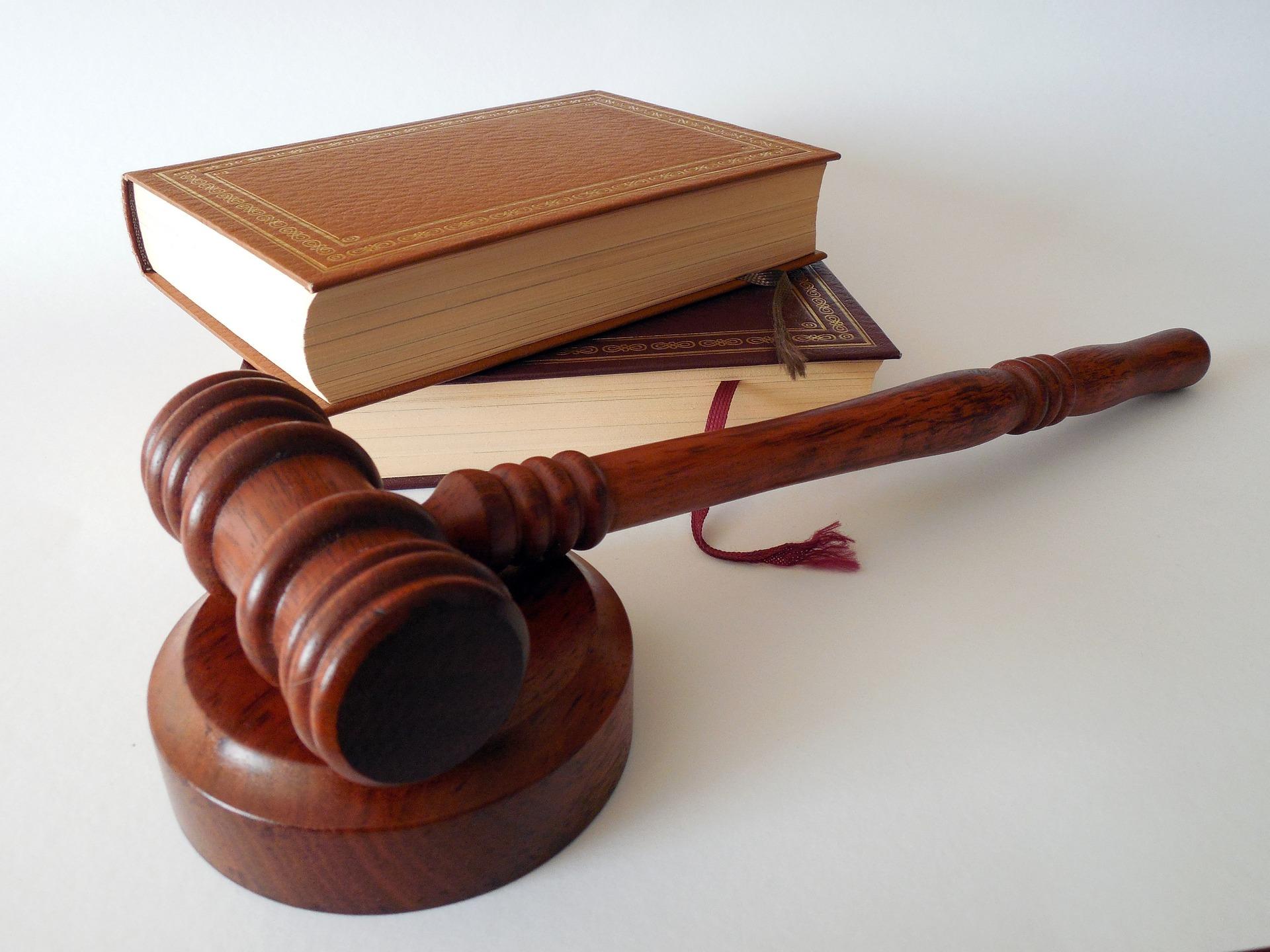 Mi Hazánk fordert Regierung auf, Gerichtsbarkeit von Straßburg abzulehnen post's picture