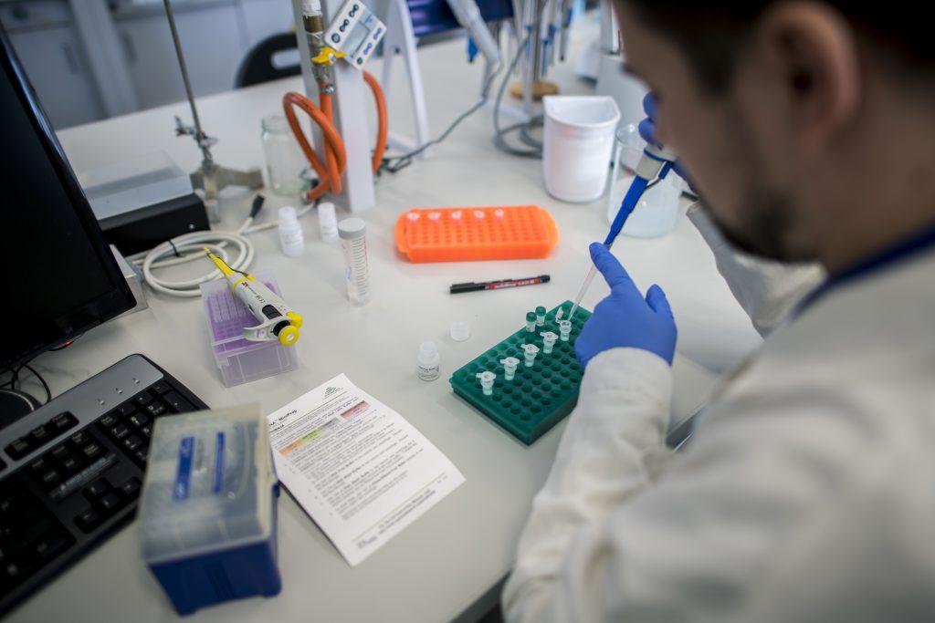 Forschungsteam von Szeged identifiziert neuen COVID-19-Rezeptor post's picture