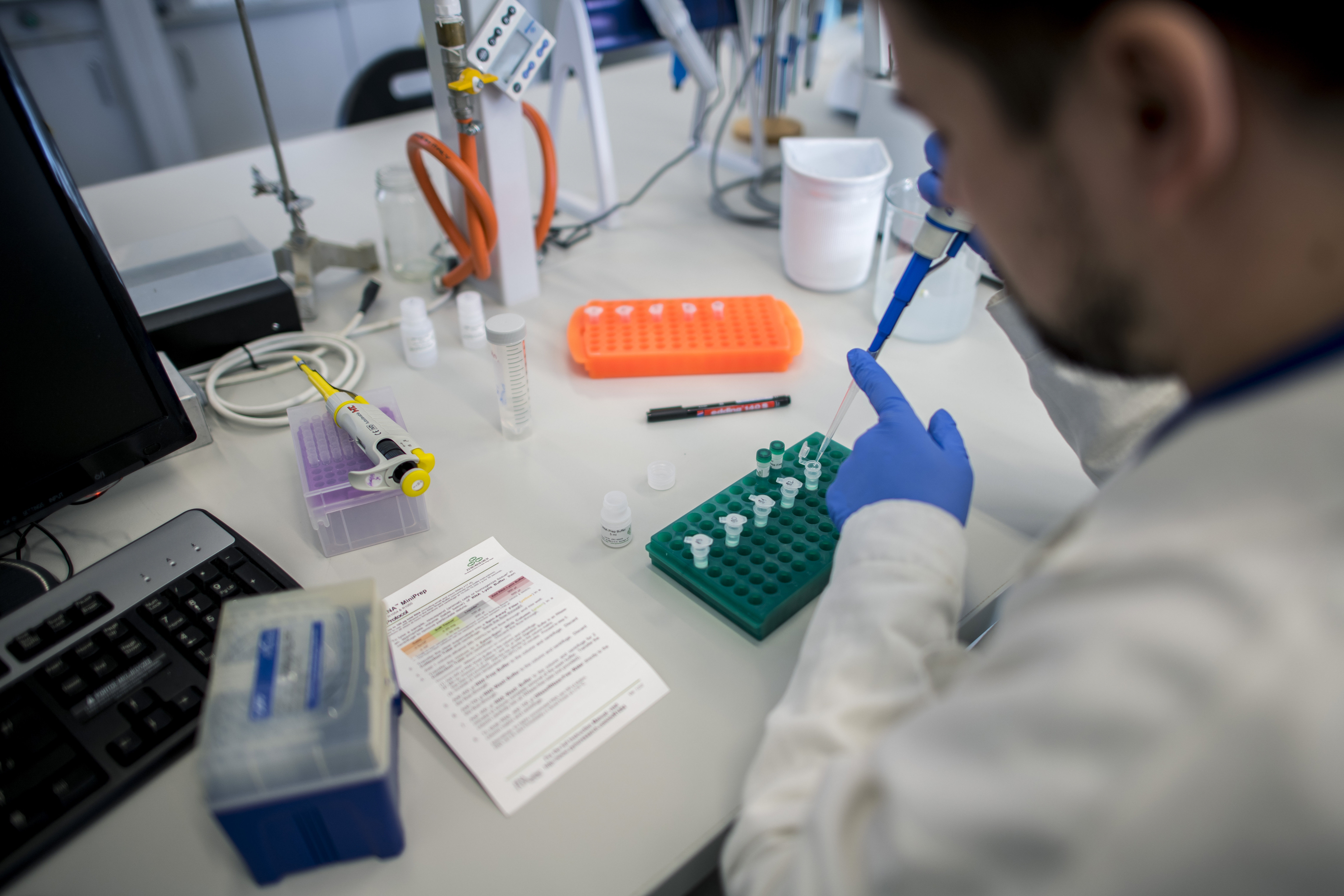 Coronavirus in Ungarn isoliert:  Impfstoff-Versuche können anfangen post's picture