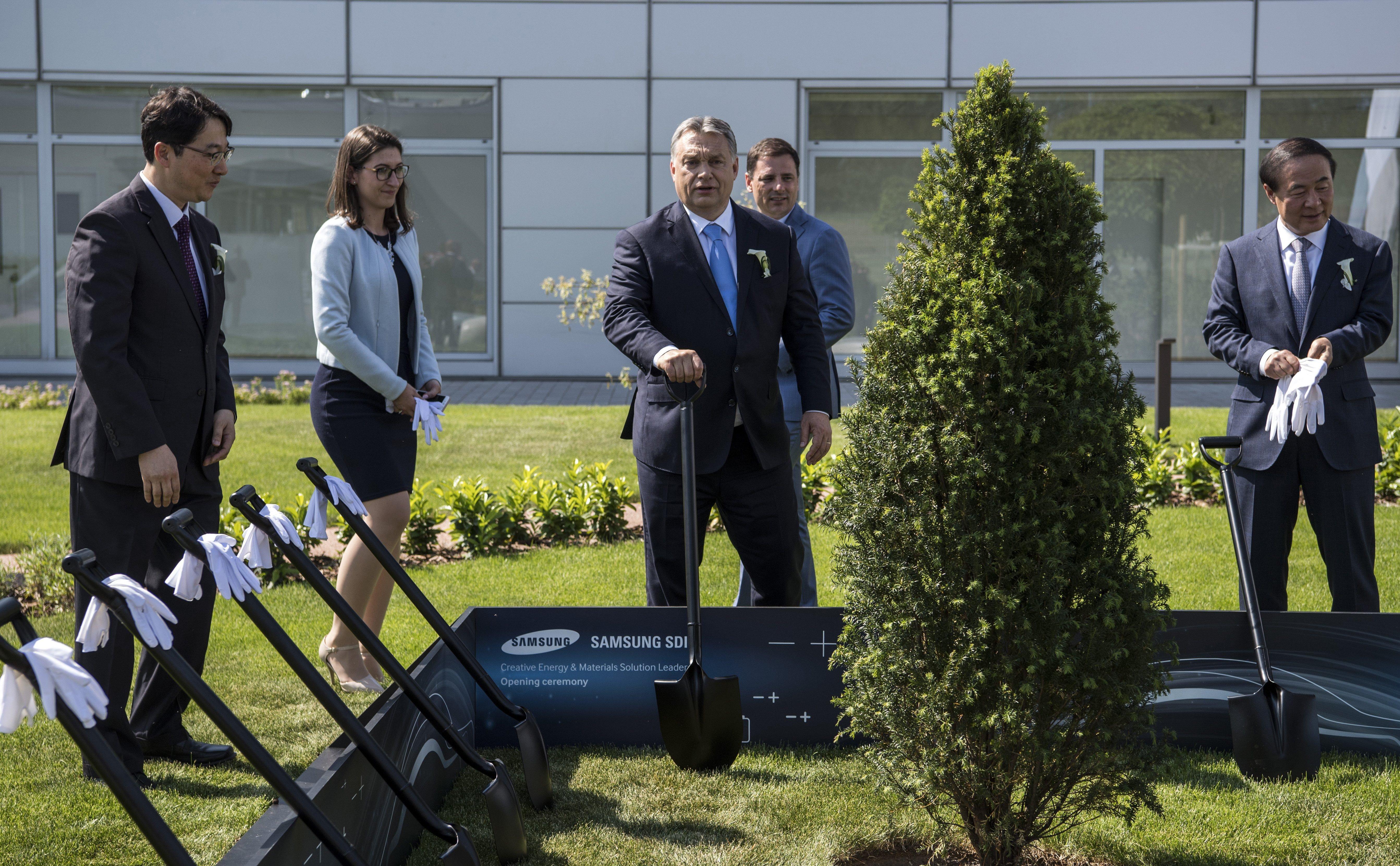 Grünes Ungarn: Premier will für jedes Neugeborene zehn Bäume pflanzen post's picture