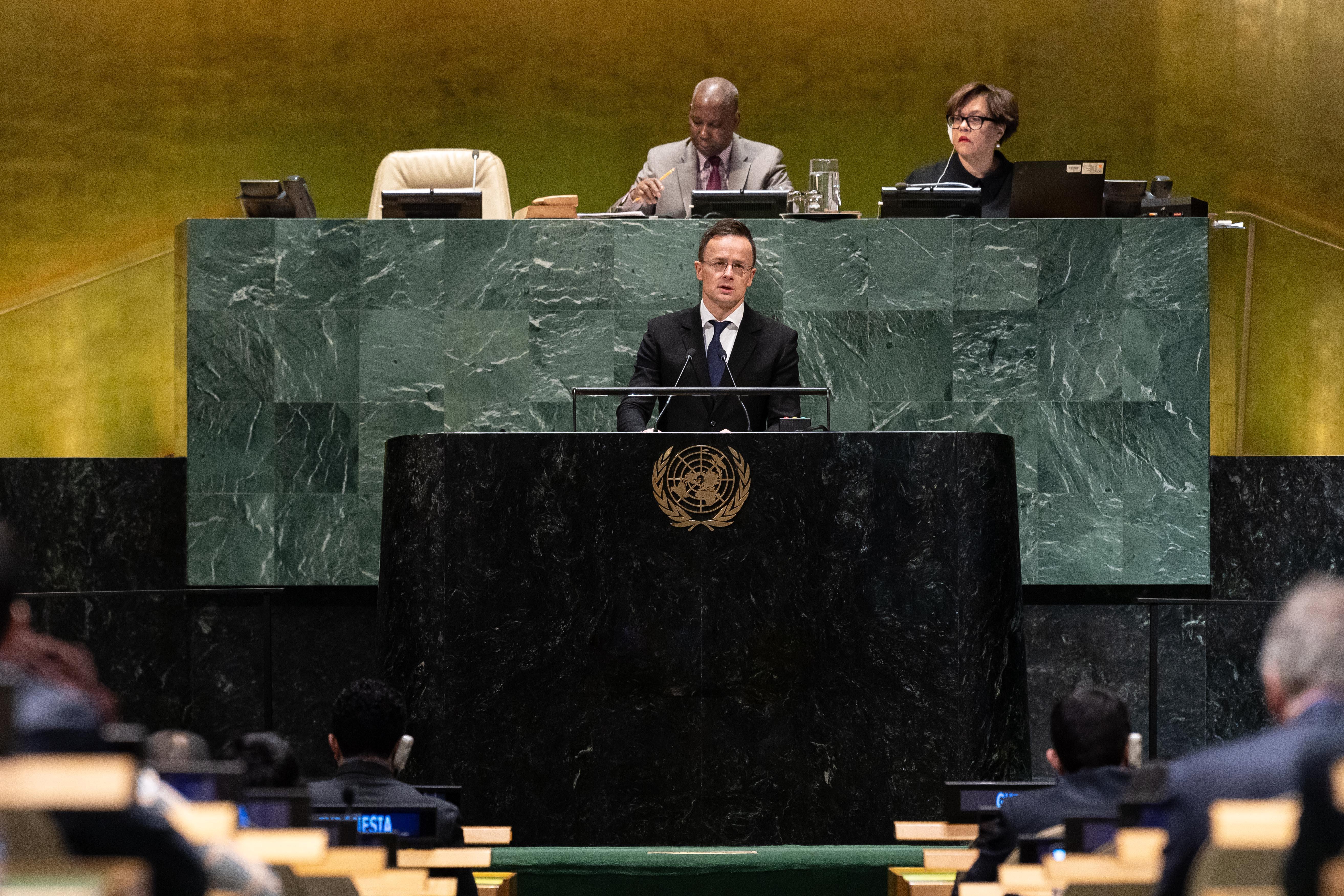 """Außenminister: """"Situation ethnischer Minderheiten in der Ukraine inakzeptabel und rechtswidrig"""""""