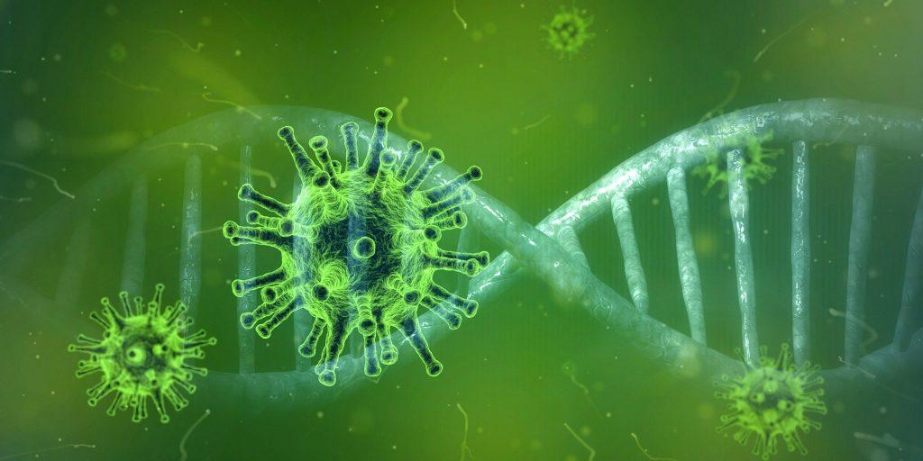 Coronavirus – Orbán führt Gespräche mit Virologen
