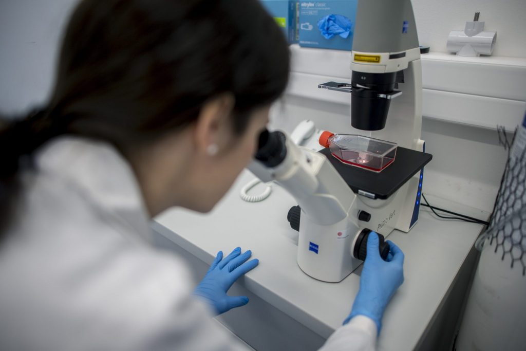 Zahl der Coronavirus-Patienten in Ungarn wächst auf 13