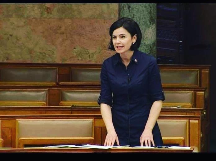 """Notstandsgesetz: Sozialisten fordern Regierung auf, sich nicht auf """"politische Spiele"""" zu konzentrieren post's picture"""