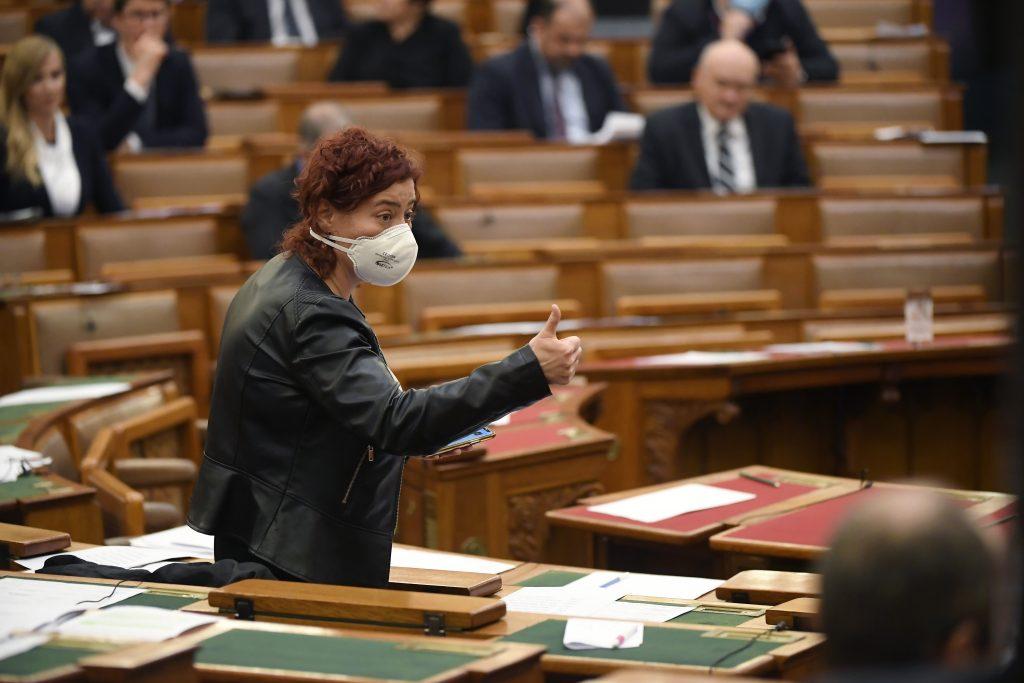 Coronavirus: Oppositionsparteien kritisieren die Maßnahmen der Regierung