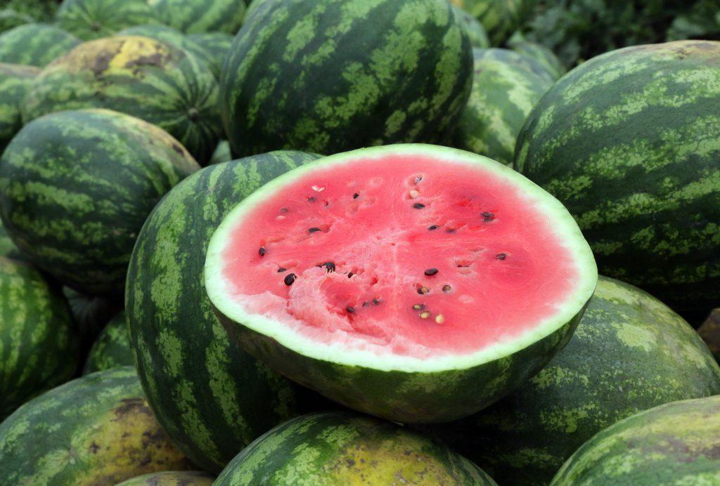 Jetzt in Saison: im Plattensee schwimmen und köstliche Wassermelonen essen