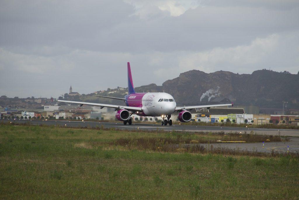 Notlandung: Vogel trifft Wizz Air