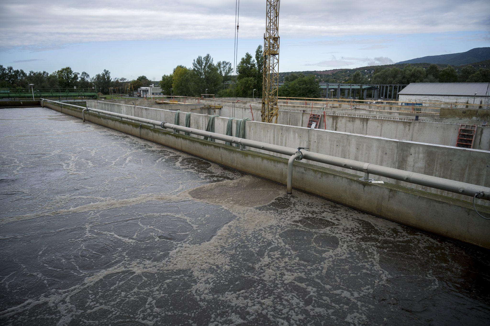 Viruskonzentration im Abwasser sinkt landesweit
