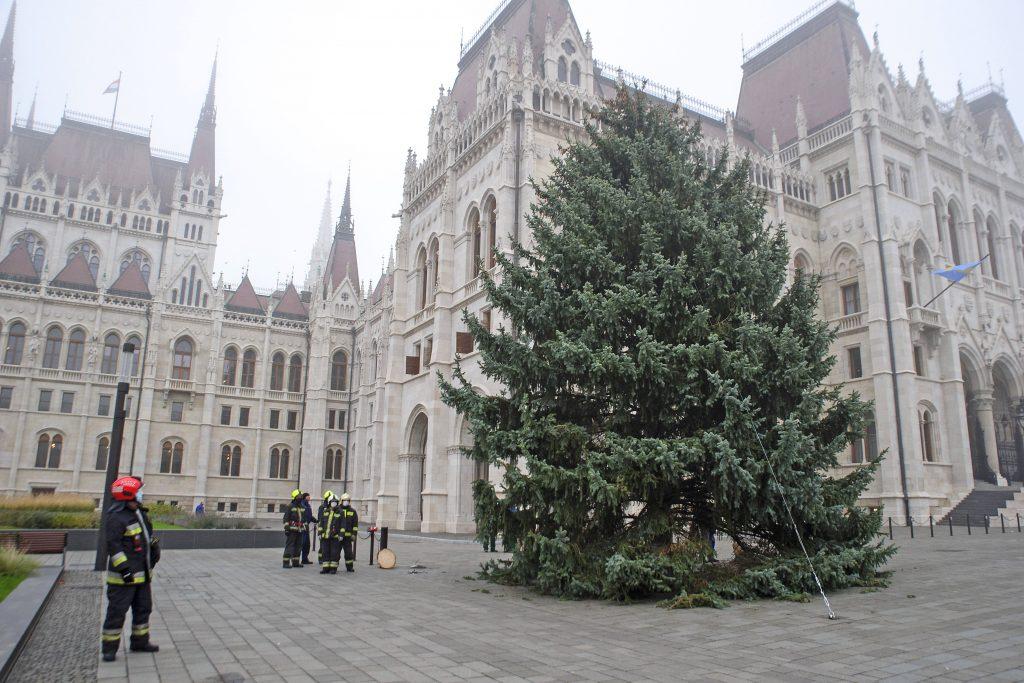 Christbaum des Landes wurde vor dem ungarischen Parlament aufgestellt