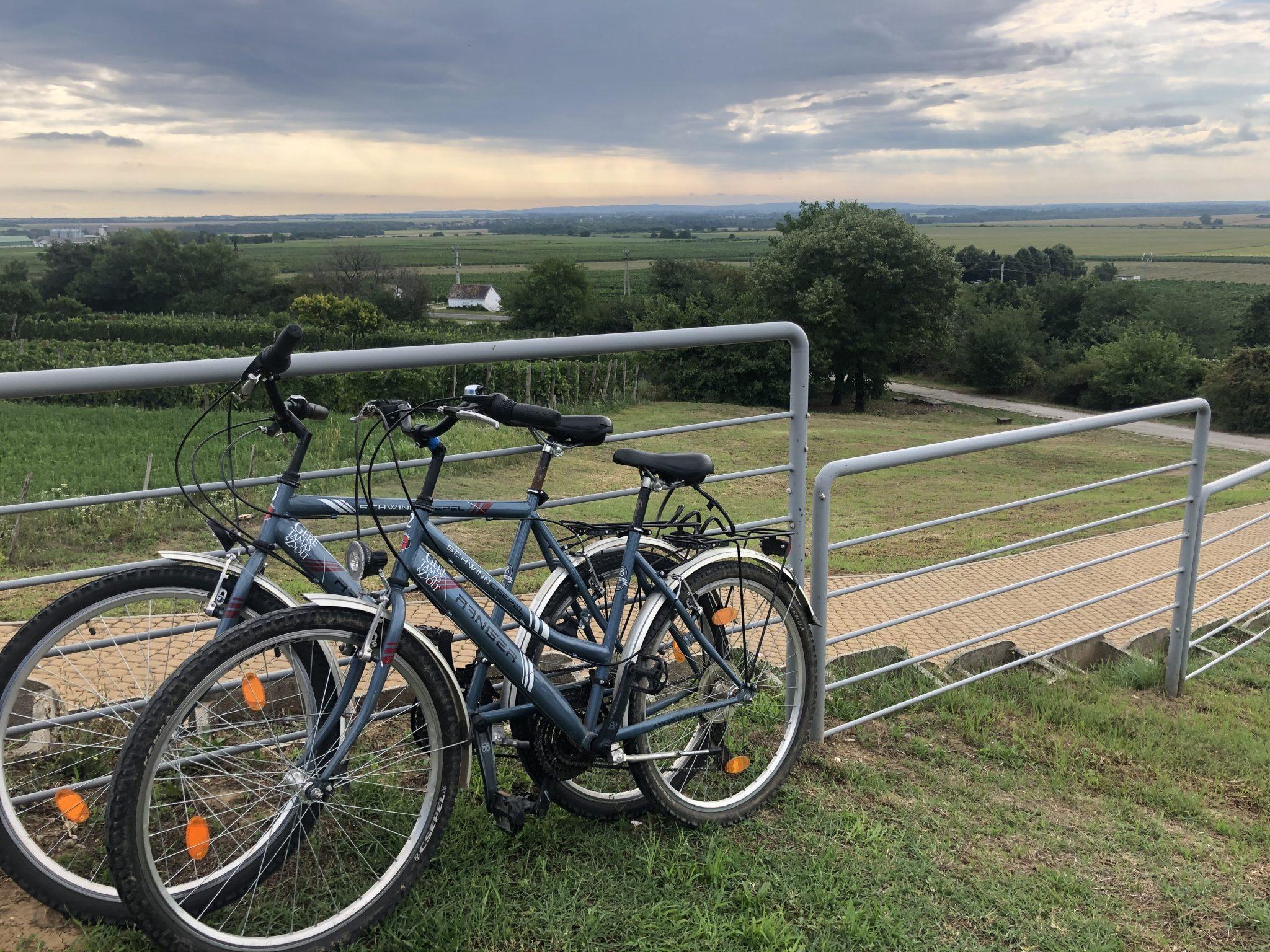 """Ungarischer Radsport-Verband: Fahrradtourismus ist """"Gewinner"""" der Covid-Krise"""