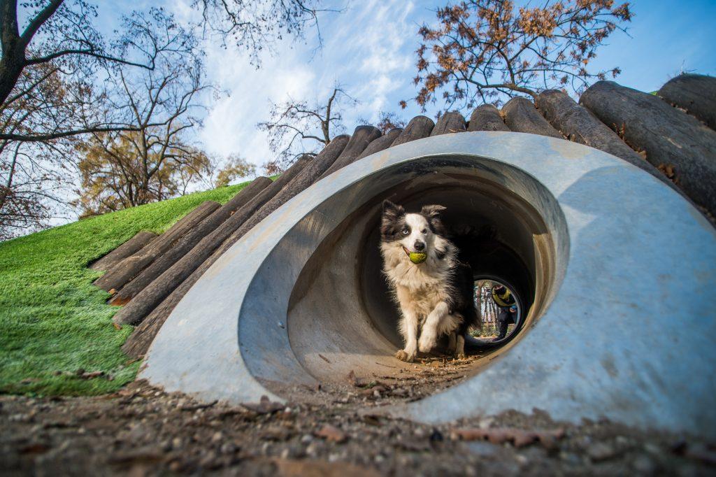 """Projekt """"Liget Budapest"""": Botanischer Garten und Hundeerlebnispark eingeweiht"""