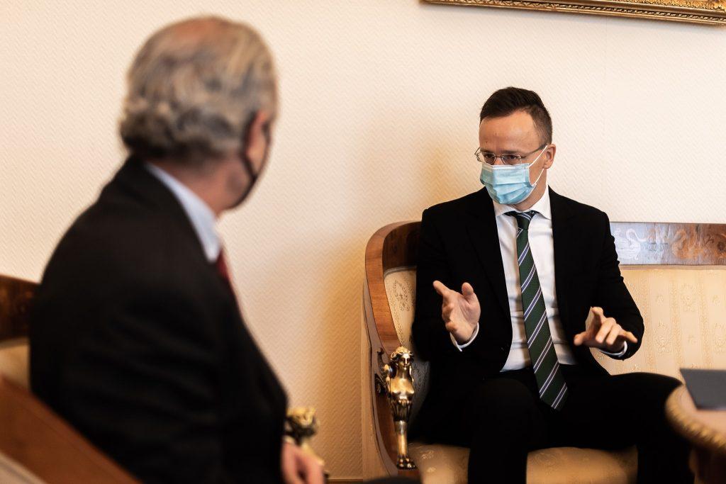 """Außenminister: """"Die gemeinsame europäische Impfstoffbeschaffung hat unsere Erwartungen nicht erfüllt"""""""