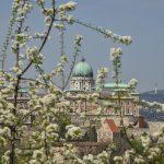 Steigende Buchungen vor Osterferien