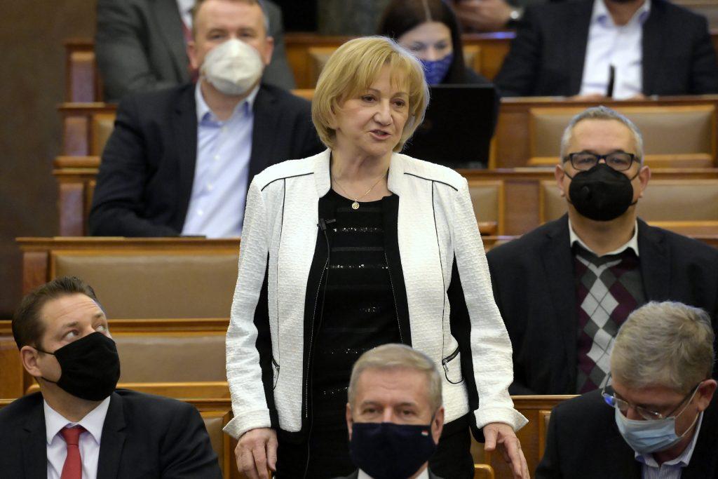 """Grüne: """"Verwendung von EU-Wiederherstellungsfonds kann keine private Angelegenheit von Fidesz sein"""" post's picture"""