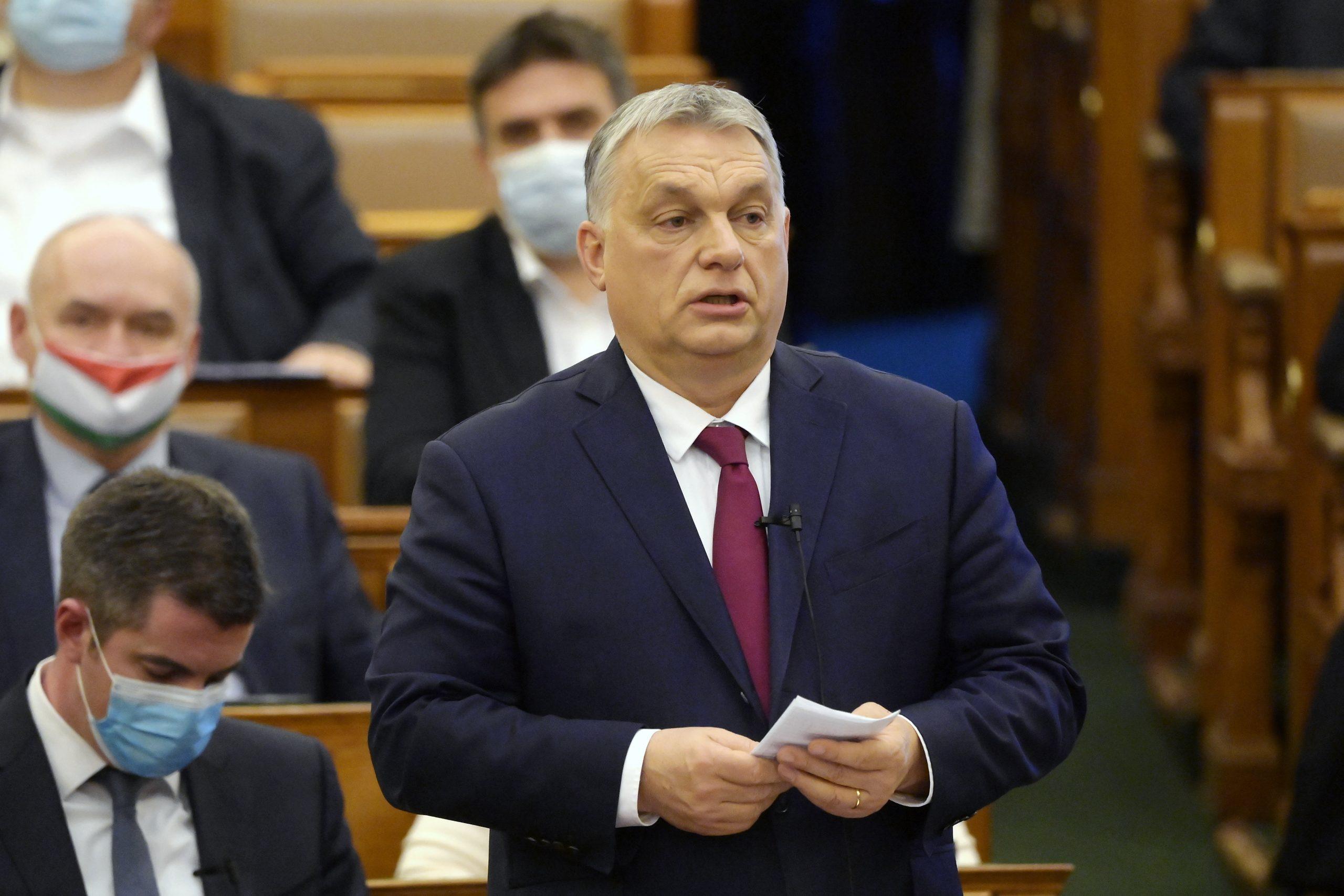 Orbán über Fall-Petry: