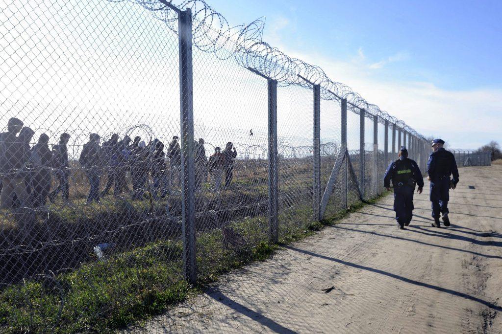 Über 15 000 illegale Migranten in diesem Jahr aufgegriffen