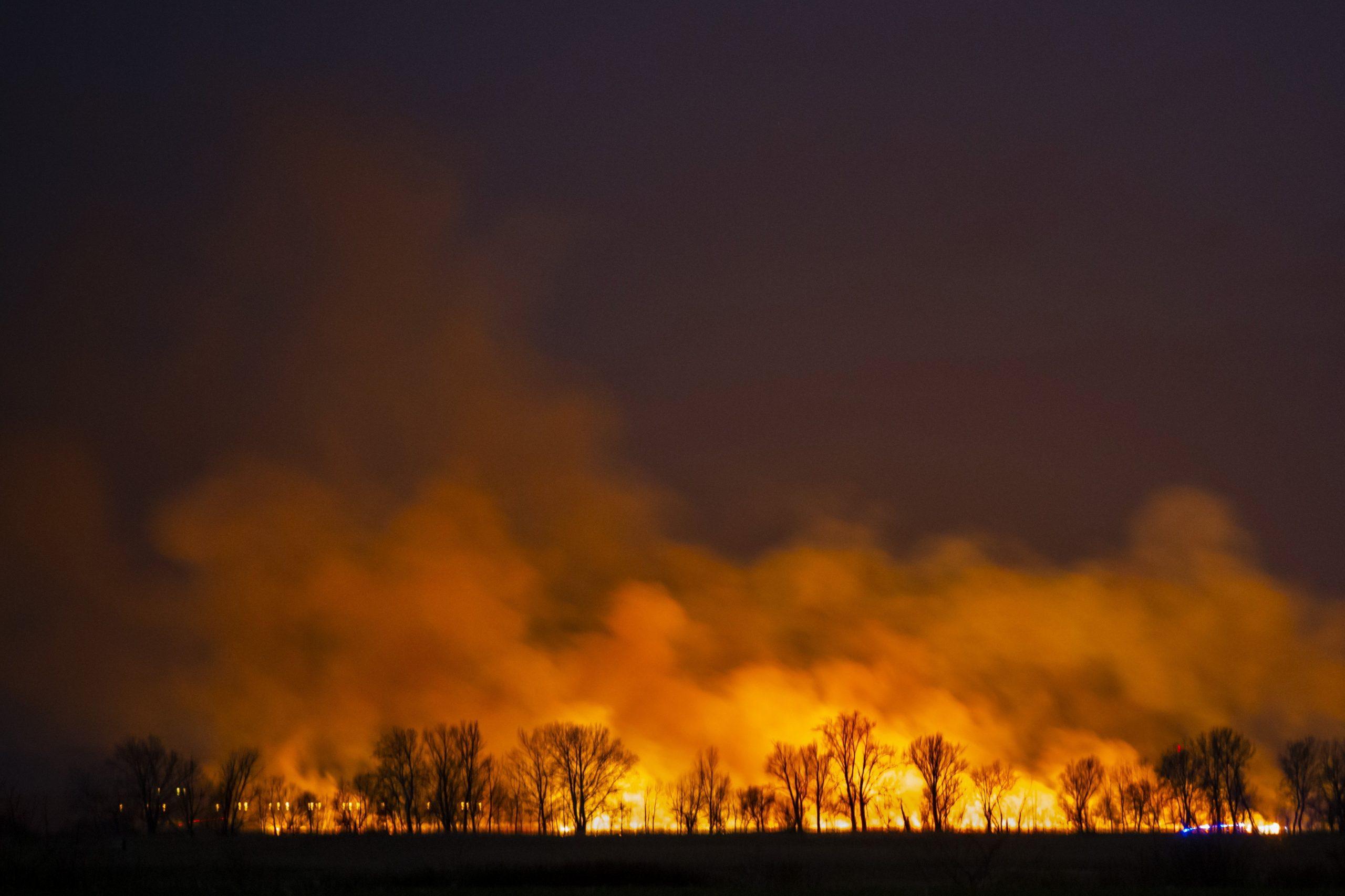 Riesiger Schilfbrand am Balaton