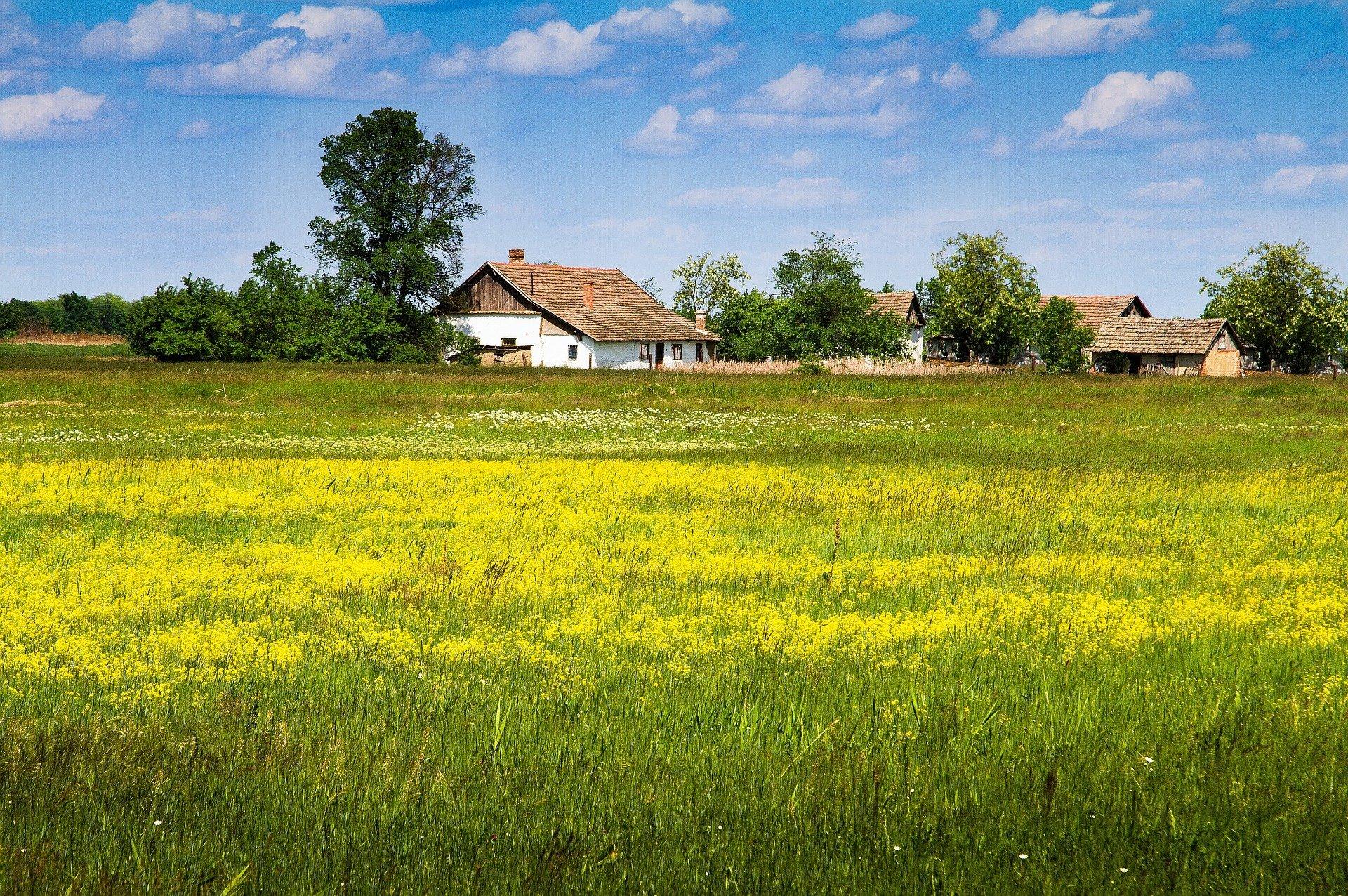 858 Millionen Forint für die ungarischen Bauernhöfe