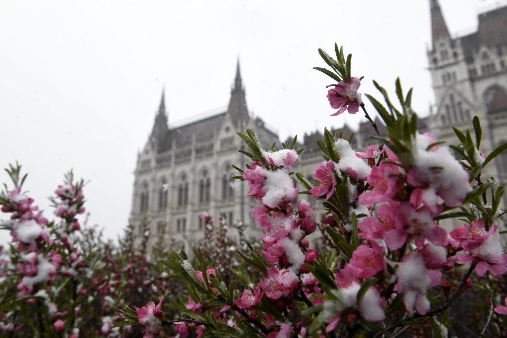 Wetter in Ungarn: Statt Frühling weitere Schneefälle zu erwarten