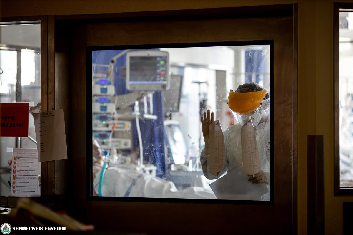 Ärztekammer: