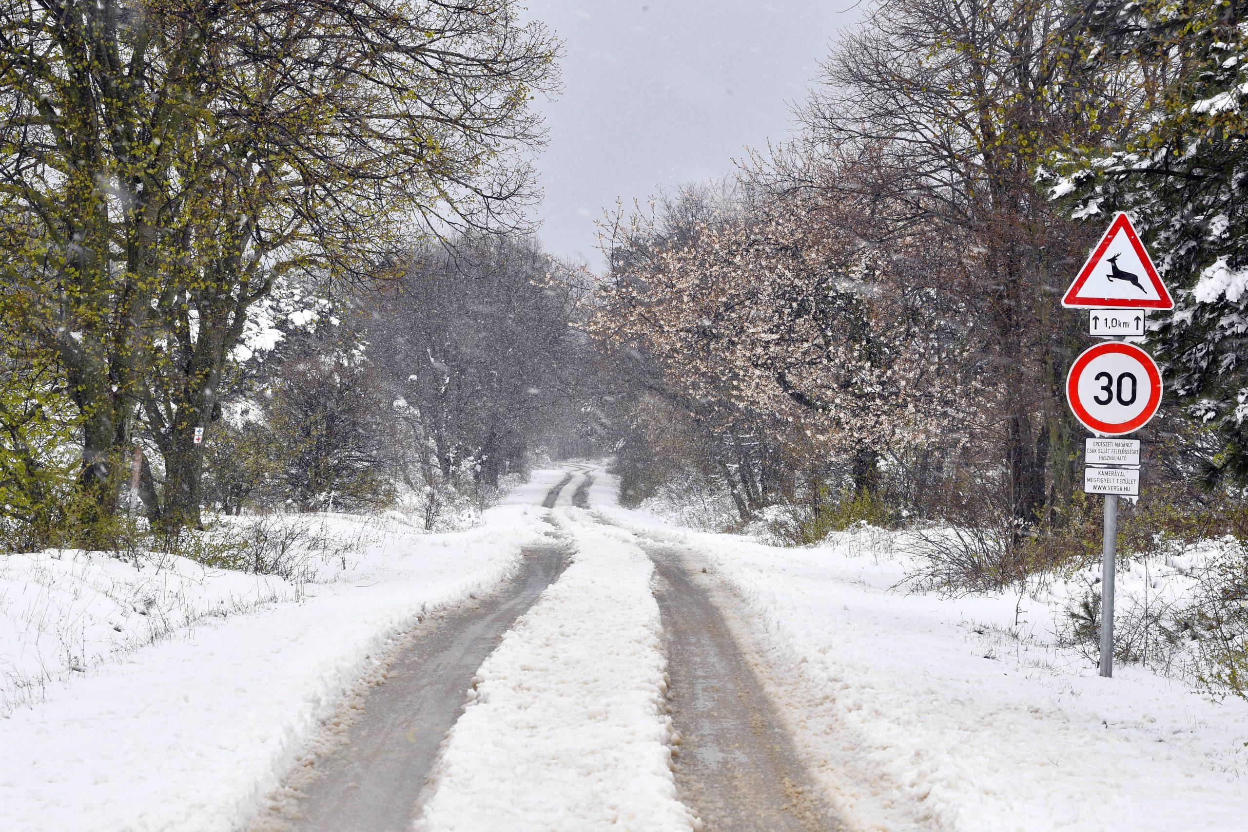 30 cm Schnee im Bakony-Gebirge gefallen - FOTOS!