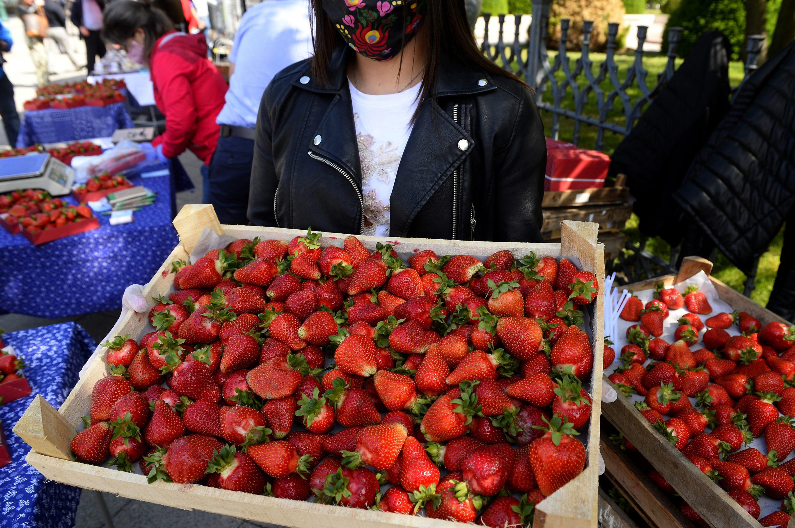 Ungarische Erdbeere extrem teuer