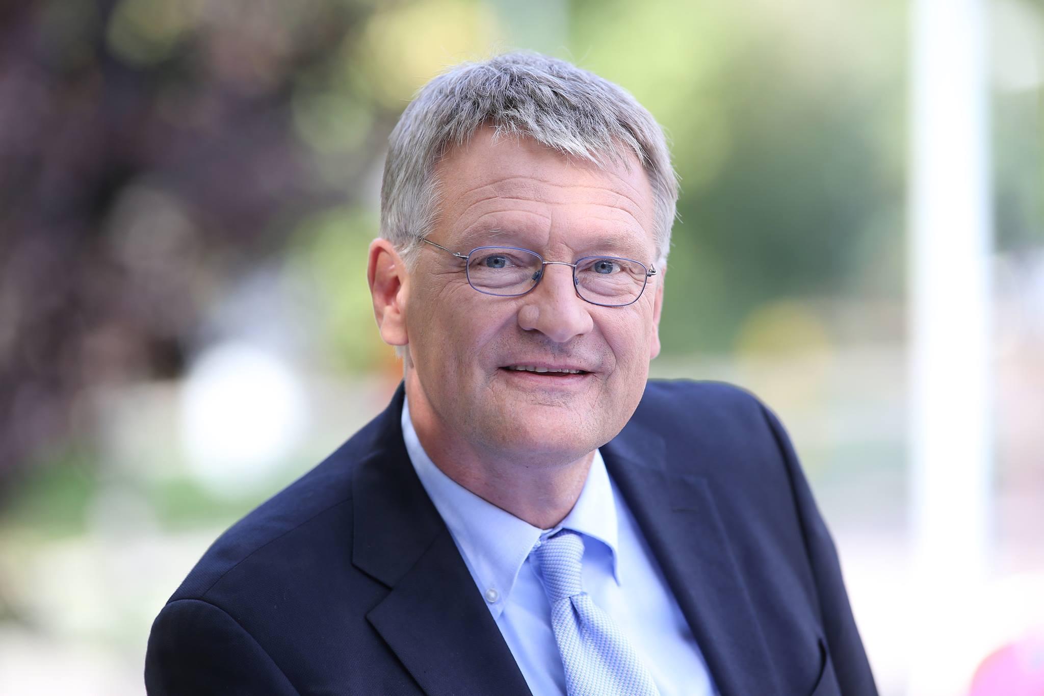 Jörg Meuthen (AfD):