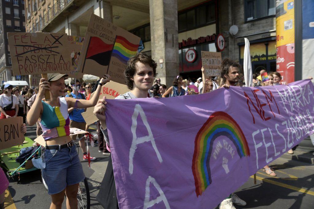 "Regierung: ""Die Linke will LGBTQ-Propaganda in Schulen zulassen"" post's picture"