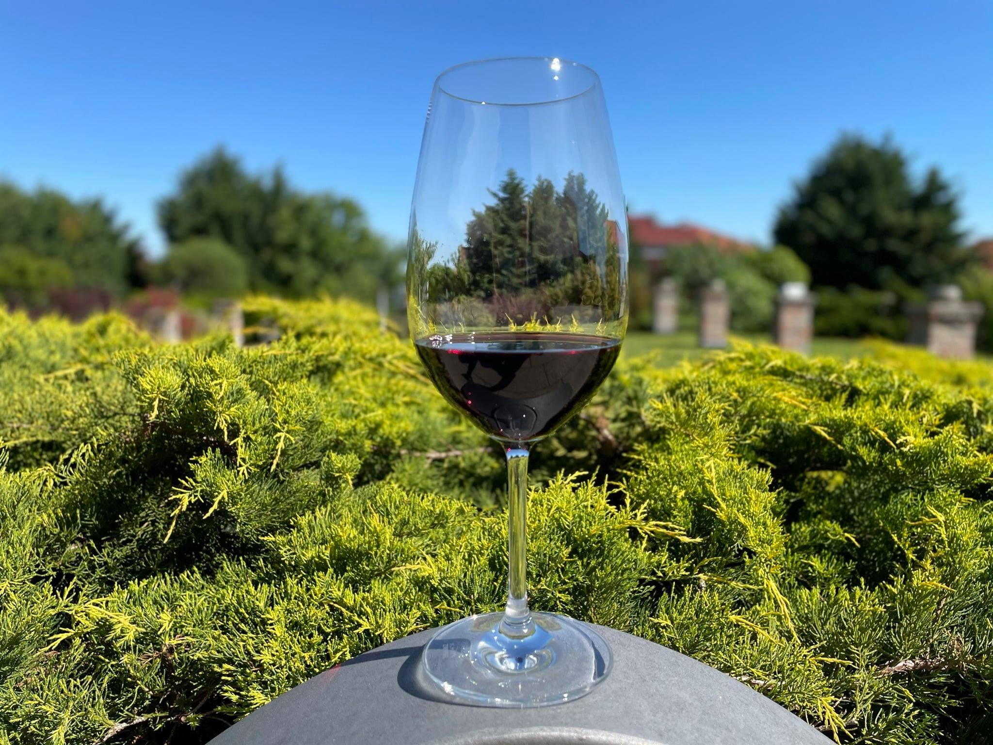 """Ungarischer Rotwein mit """"Grand Gold Medal Revelation Red Wine"""" ausgezeichnet"""