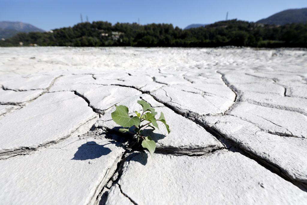 LMP wendet sich wegen des abgelehnten Klimaschutzreferendums an das oberste Gericht post's picture