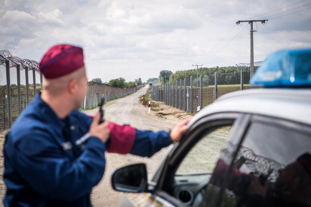 """""""Zahl der festgenommenen illegalen Migranten an der Grenze gestiegen"""" post's picture"""