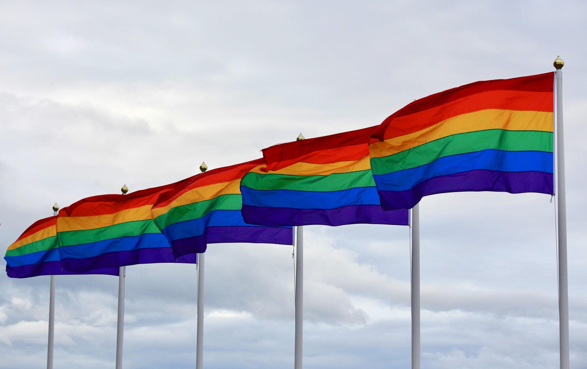 Medienrat: Das gilt als Förderung von Homosexualität